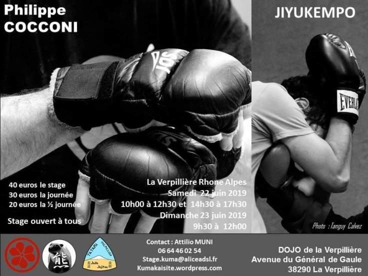 Affiche stage JKP à Lyon